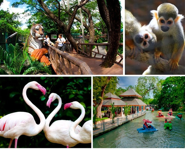 worldcitypages-dusitzoo