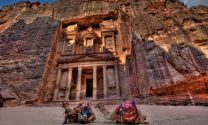 Petra (Rose Petal), Rose of Jordan